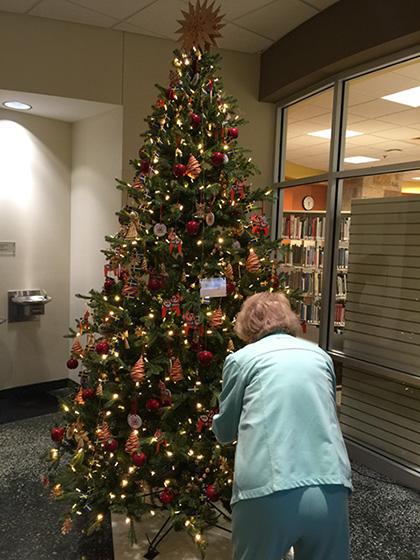 Meijer Gardens Christmas Tree Decorating Photo